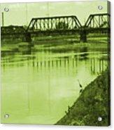 Crane At The River Acrylic Print