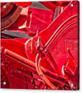 Crane Detail Acrylic Print