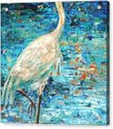 Crane Reflection Acrylic Print