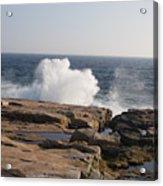 Crashing Waves On Maine Coast Rocks  Acrylic Print