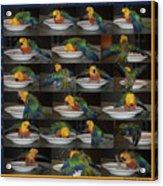 Crayolas Bath Time Acrylic Print