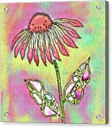 Crazy Flower With Funky Leaves Acrylic Print