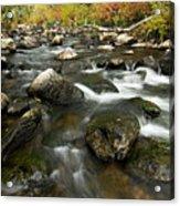 Crazy Woman Creek In Autumn Acrylic Print
