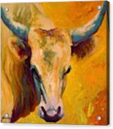 Creamy Texan - Longhorn Acrylic Print