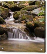 Creek 1 Acrylic Print