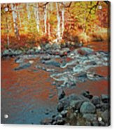 Creek 5  Acrylic Print