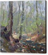 Creek At Lockport Natural Trail Acrylic Print