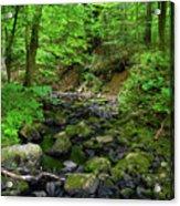 Creek Crossing In Ma Acrylic Print