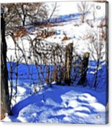 Creek Fenceline Acrylic Print