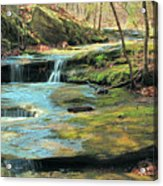 Creek In Dappled Light At Don Robinson State Park 1 Acrylic Print