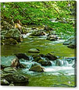 Creek In Great Smoky Mountains National Acrylic Print