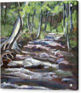 Creek In The Park Acrylic Print