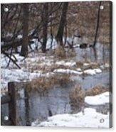 Creek in Winter Acrylic Print