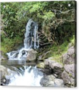 Creek On Kalalaua Trail Acrylic Print