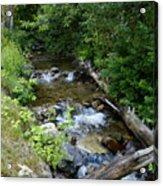 Creek On Mt. Spokane 1 Acrylic Print