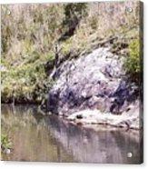 Creek Side Acrylic Print