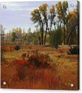 Creek Valley Beauty Acrylic Print