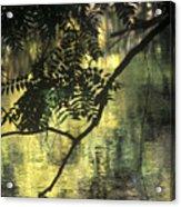 Creekside Color 2 Acrylic Print