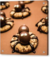 Creepy Crawly Spider Bites. Halloween Food Acrylic Print