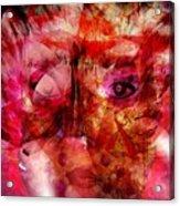 Creolite - Double Consciousness Acrylic Print