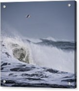Crest Of A Wave Acrylic Print