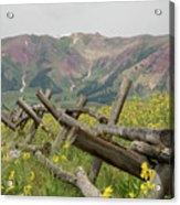 Crested Butte Color Acrylic Print