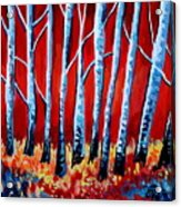 Crimson Birch Trees Acrylic Print