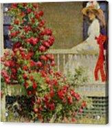 Crimson Rambler Acrylic Print by Philip Leslie Hale