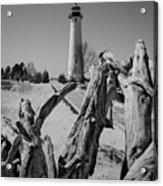 Crisp Point Lighthouse With Driftwood Acrylic Print