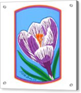 Crocus Too Acrylic Print