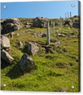 Crofters Fence Acrylic Print