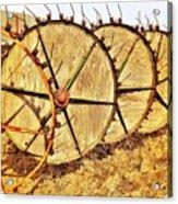 Crop Circles Acrylic Print
