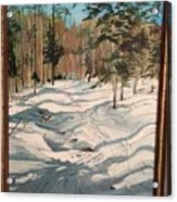 Cross Country Ski Trail Acrylic Print