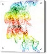 Crossed Paths Acrylic Print
