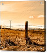 Crossed Wires Acrylic Print
