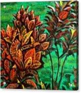 Crotons 5 Acrylic Print