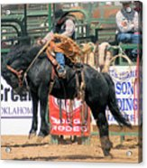 Crow Hopping Saddle Bronc Acrylic Print
