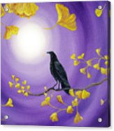 Crow In Ginkgo Leaves Acrylic Print