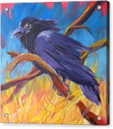 Crow In The Grass 5 Acrylic Print