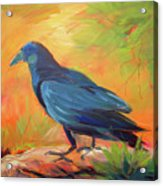 Crow In The Grass 7 Acrylic Print