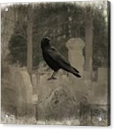 Crow In The Old Graveyard Mix Acrylic Print