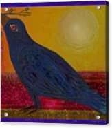Crow In The Sun Acrylic Print
