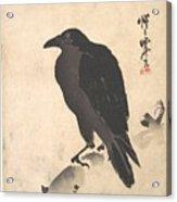 Crow Resting On Wood Trunk Acrylic Print