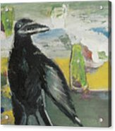 Crow Ruckus Acrylic Print