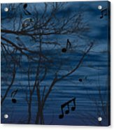Crow Sings At Midnight Acrylic Print