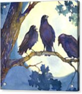 Crows In Moonlight Acrylic Print