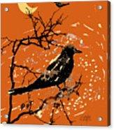 Crows On All Hallows Eve Acrylic Print