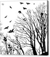Crows Roost 2 - Black And White Acrylic Print