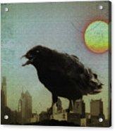 Crowzilla Acrylic Print