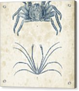Crustaceans - 1825 - 14 Acrylic Print